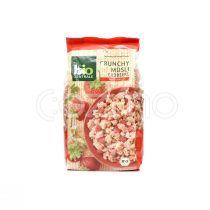 Bio Zentrale Crunchy Strawberry Muesli 375g