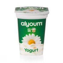 Alyoum Yogurt 500g