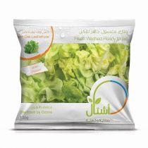 Ashtal Green Oak Leaf Lettuce