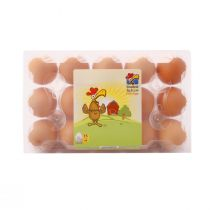 Sinokrot Fresh Brown Eggs Plastic Pack 15pcs